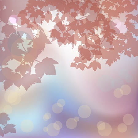 Foggy background with maple branches Stock Vector - 12389415