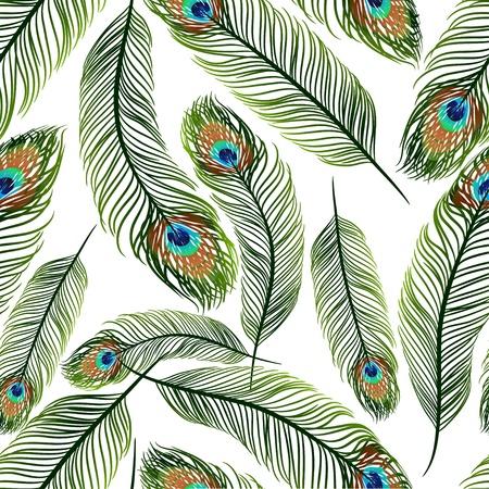 piume: Seamless con piume di pavone Vettoriali