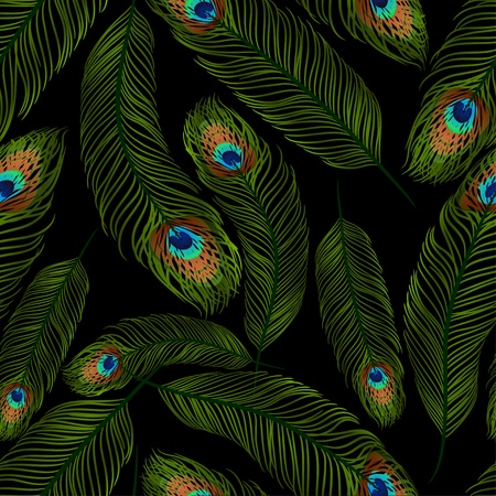 peacock pattern: Seamless texture with peacock feathers