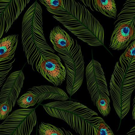pluma de pavo real: Textura transparente con plumas de pavo real