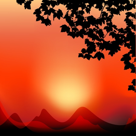 Vector sunset landscape Stock Vector - 13039371