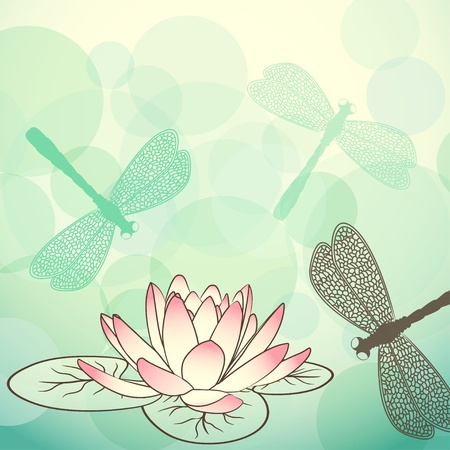 Calm lake background with lotus flower and dragonflies