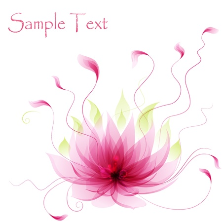 beautiful summer growth: Abstract pink lotus flower