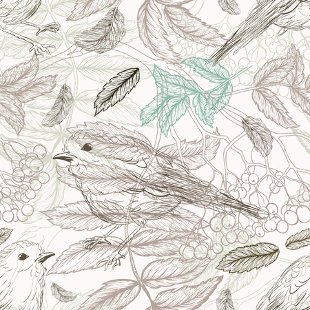 rowan: Handdrawn pattern with feathers and bird and rowan branches Illustration