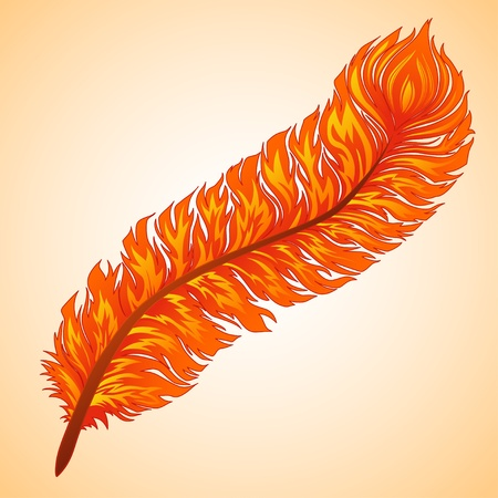 Vector fiery feather