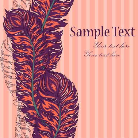 feather quill: Vector colorful feather border Illustration