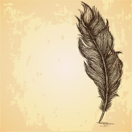 pluma: Bosquejo de la pluma en la textura sucia