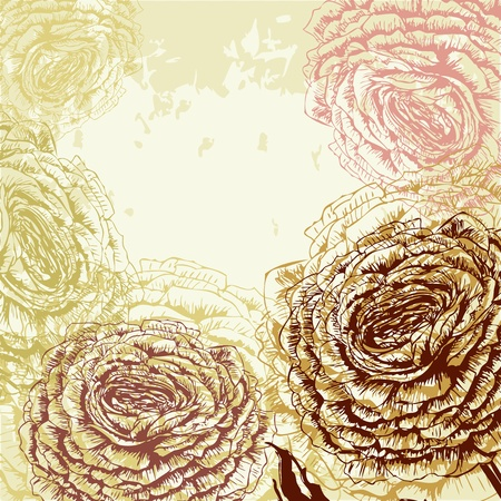 Grungy rose background Stock Vector - 17959111