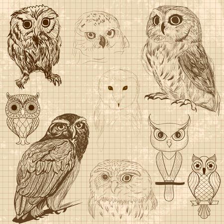 Set of retro owl sketches