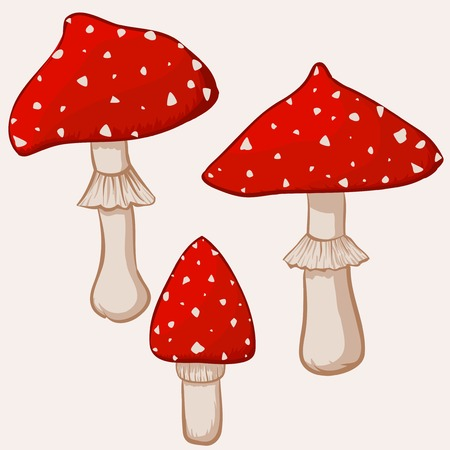 Illustration of cartoon amanita muscaria mushrooms Stock Vector - 26237902