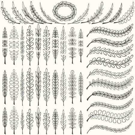 illustrators: Hand drawn floral pattern borders and floral design elements set. Pattern and art brush templates. Vector illustration.