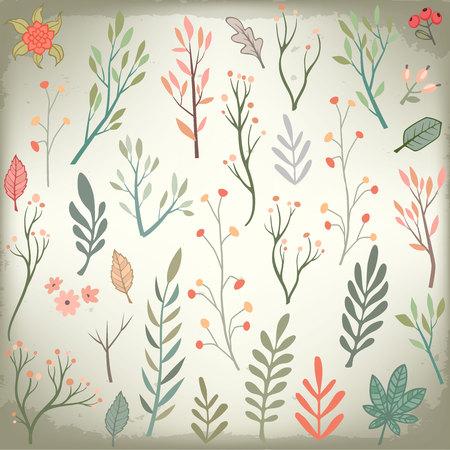 Wedding vintage floral elements collection. Romantic hand drawn vector set for design