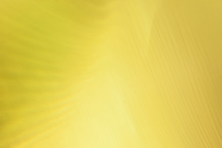 Yellow abstract background .