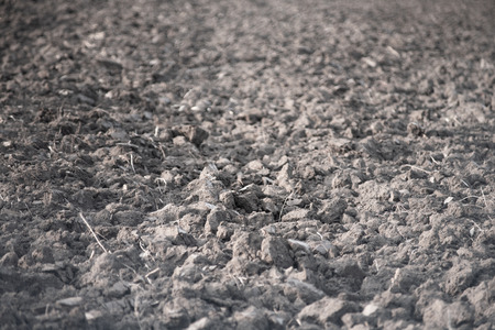 Plowed field of land. Texture .