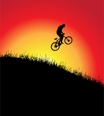 Bicycle frame, sunset, illustration Vector