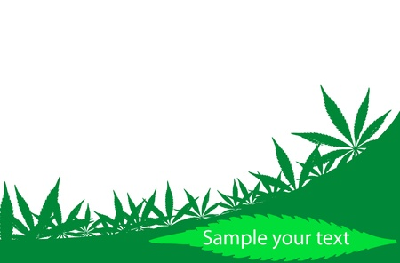 Cannabis frame, which can be used like a visit card =)  Vector illustration. Zdjęcie Seryjne - 9542877