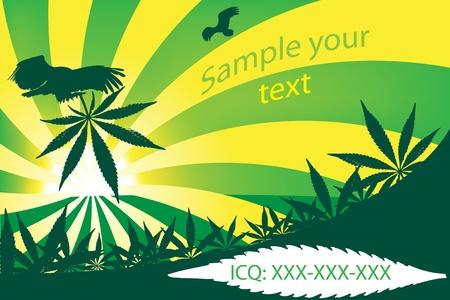 text field: Cannabis visit card, vector illustration