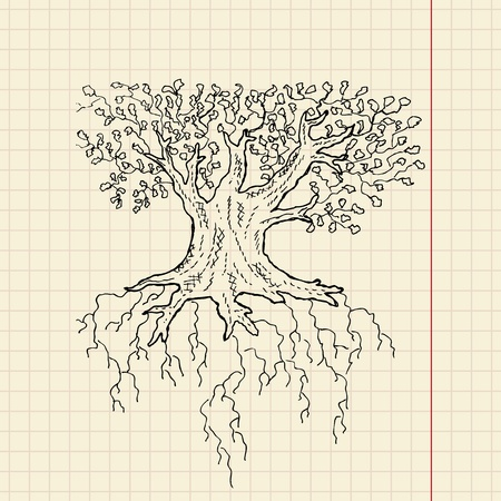 knotted: Oak tree sketch on school paper, vector illustration, eps 10