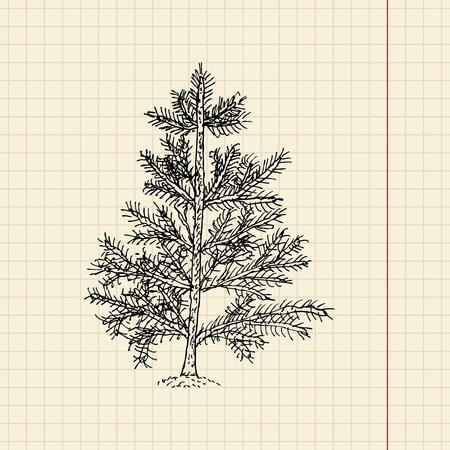 Christmas tree sketch on school paper, vector illustration, eps 10 Vector