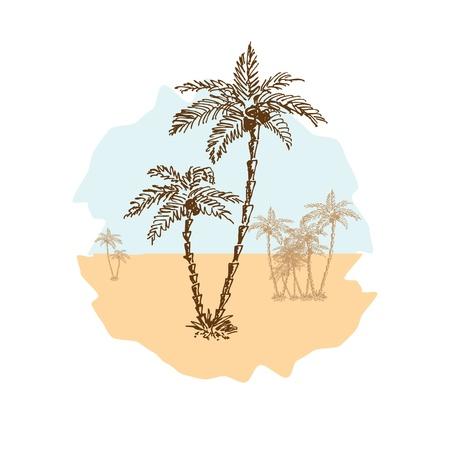 desert oasis: Sketch of palms in the desert, vector illustration, eps10