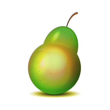 fruited: Isolated realistic pear on white. Illustration