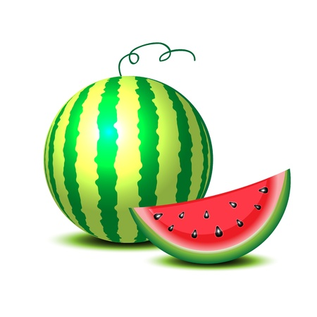 watermelon slice: Isolated watermelon on white. Illustration