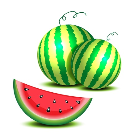 Isolated watermelon on white. Vector
