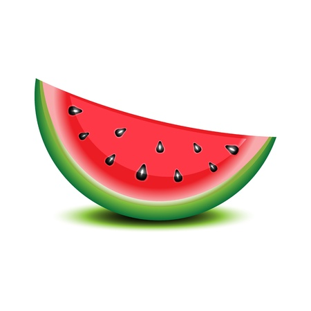art piece: Isolated watermelon on white. Illustration
