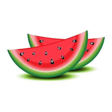 watermelon: Isolated watermelon on white. Illustration