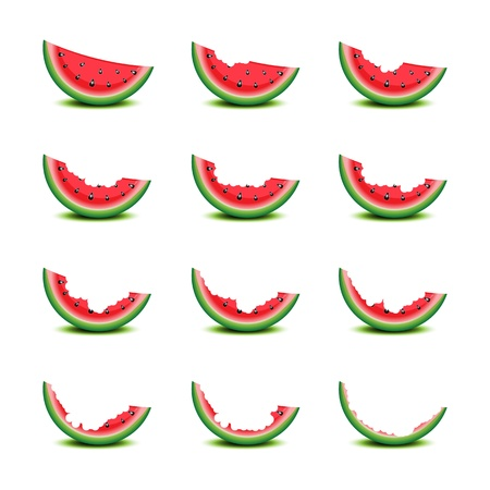 summer tire: Bitten slices of watermelon on white illustration