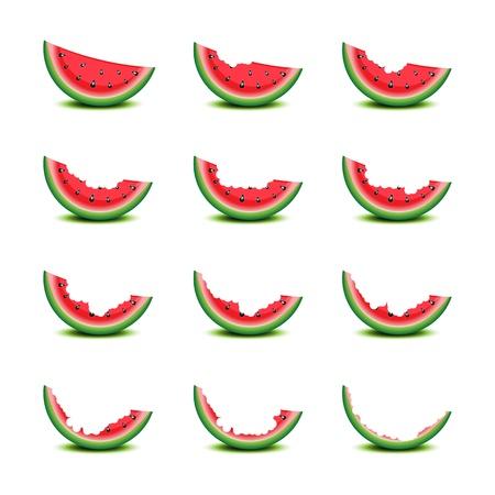 summer tires: Rebanadas de sand�a mordida en la ilustraci�n blanco Vectores
