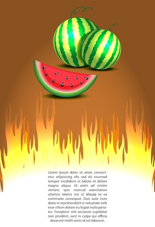 Watermelon discount sale with hot prices illustration Vector