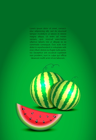 Illuminated watemelons and a text on green wall illustration Vector