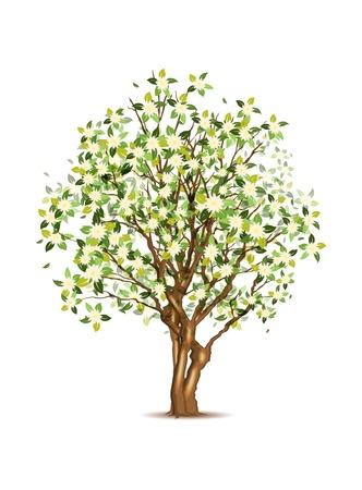 Green spring apple tree, vector illustration, eps10, three layers, easy editable