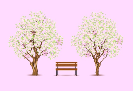 Traditional japanese trees and bench Vector