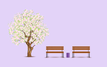 Traditional japanese tree and benches, vector illustration,
