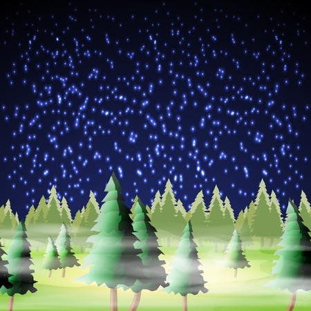 Night forest, vector illustration, eps10, 4 layers, easy editable Vector