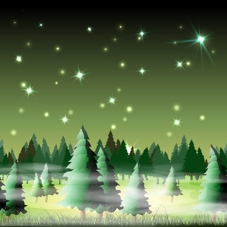 Night forest, vector illustration, eps10, 5 layers, easy editable Vector