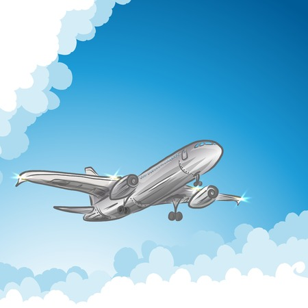 airliner: Airliner in sky