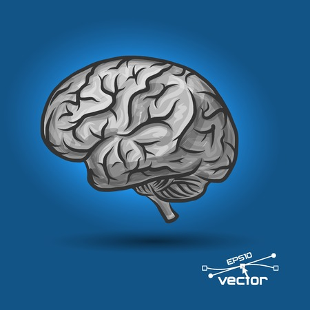 dissect: Brain of the person with a considerable quantity of convolutions