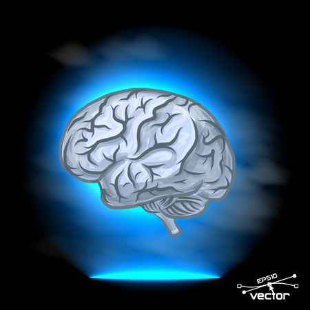 Brain imagination, produce melatonin, vector illustration for your design, 4 layers
