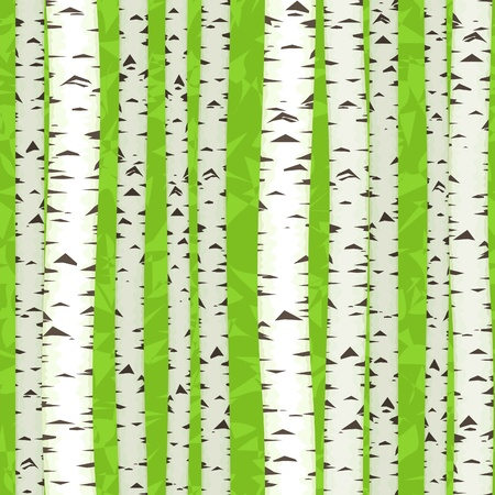 seamless birch stems illustration as spring texture background