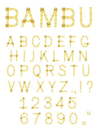 type lettering: bamboo wood abc alphabet isolated on white Illustration
