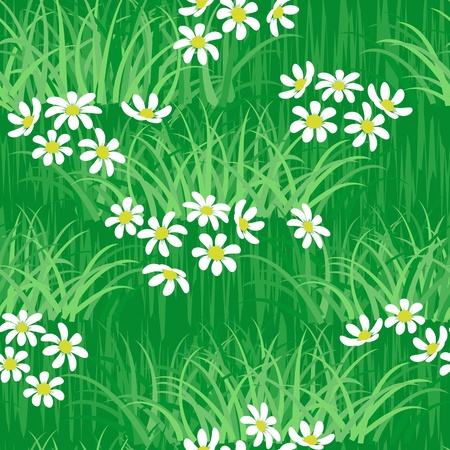 camomile on green grass field seamless background pattern Stock Vector - 9832539