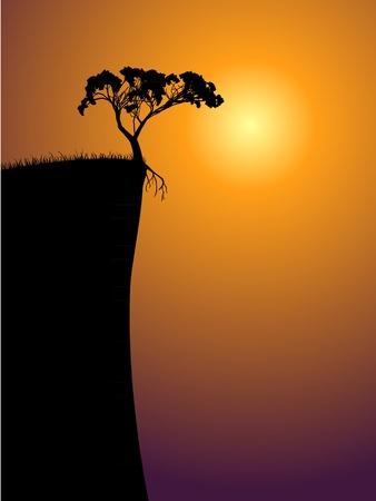dishevel: singolo albero solitario su un sole precipizio, in una nebbia