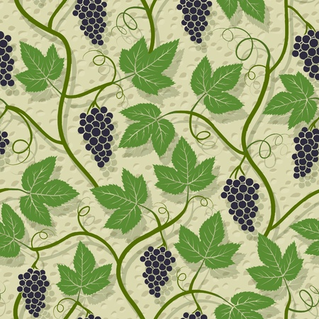 Grape, vine on wall growing seamless pattern Vector