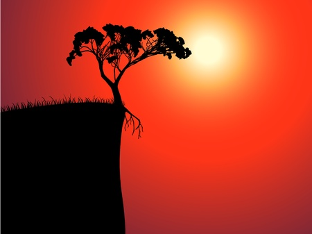 Einzigen einsamen Baum am Rande, Sonne im Nebel Standard-Bild - 10896341