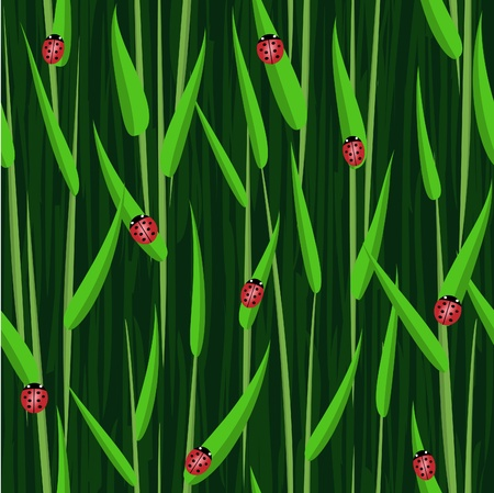 vector green grass ladybird seamless background pattern Vector