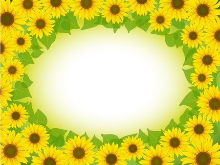 macro flowers: vector yellow sunflower postcard frame background pattern
