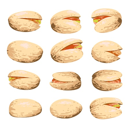 pistachio fruit set isolated on white background Vector